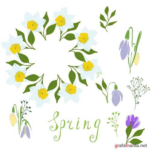 Daffodils,snowdrops, Stylized Herbs