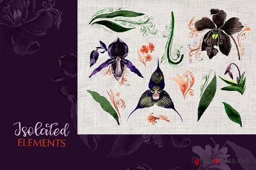 Orchid Black Watercolor Png - 248424