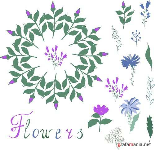 Floral Elements for Your Design on White