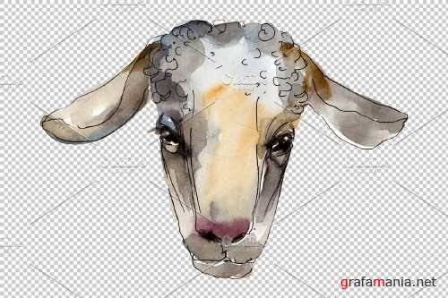 Farm animals: Ram head Watercolor png - 3732238
