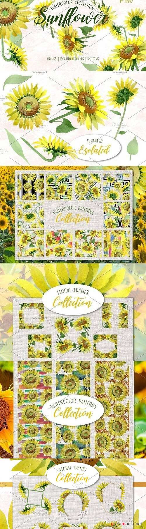 Sunflower Yellow Watercolor png - 3724215