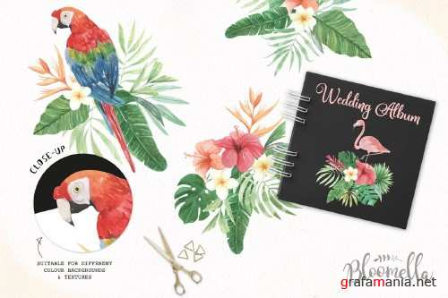 Tropical Watercolor Flamingo Clipart - 2463033