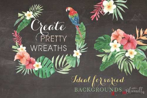 Watercolor Tropical Elements Set - 2485564