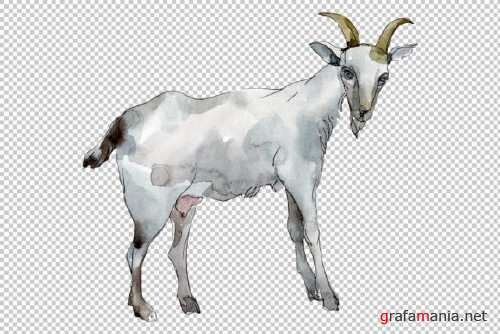 Agriculture: Goat Watercolor Png 260569