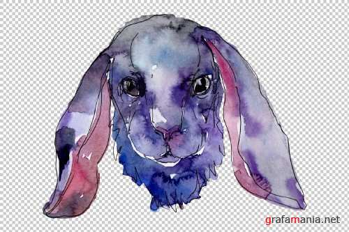 Farm animals: rabbit head Watercolor - 3800488