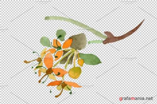 Cornus mas Watercolor png - 3816707