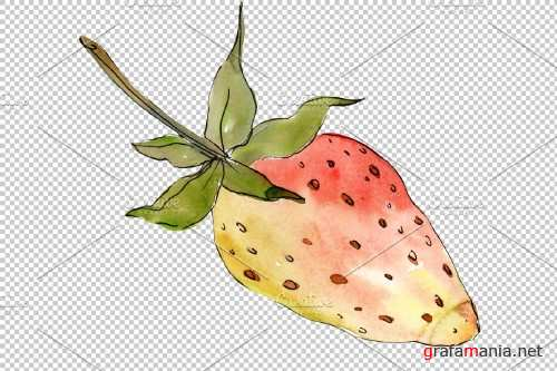 """Strawberry """"Kimberly"""" watercolor png - 3864770"""