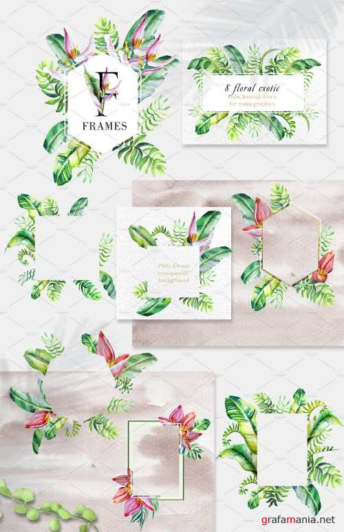 Floral Tropical Collection 3565227