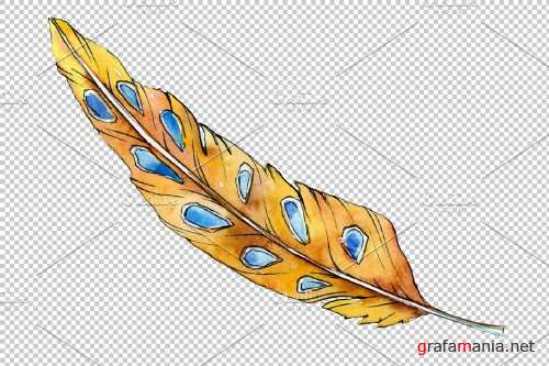 Magic feather Dream watercolor png - 3898982