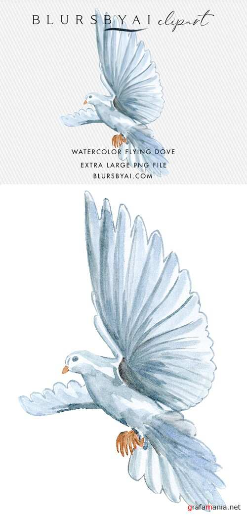 Flying Watercolor Dove Clipart