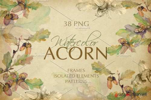 Acorn Watercolor png - 3905552