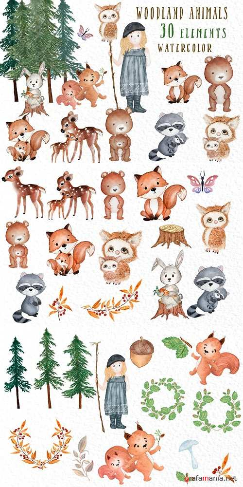 Forest Friends Woodland animals - 3909028
