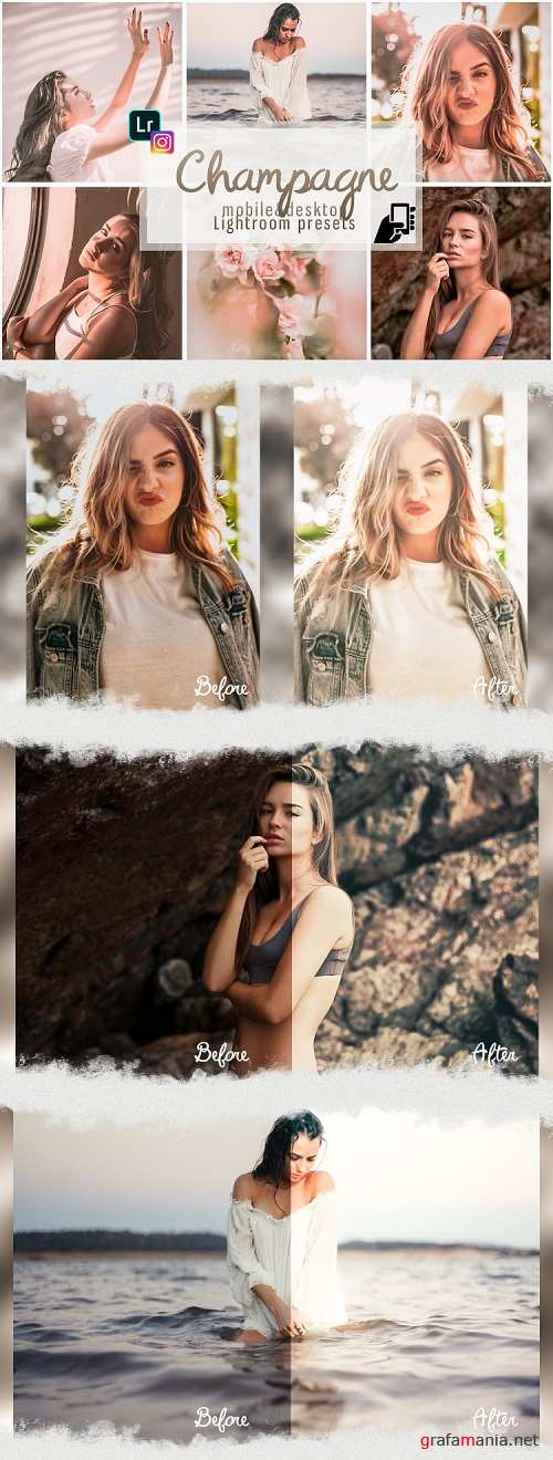 Champagne professional presets dng mobile pc pastel - 254640