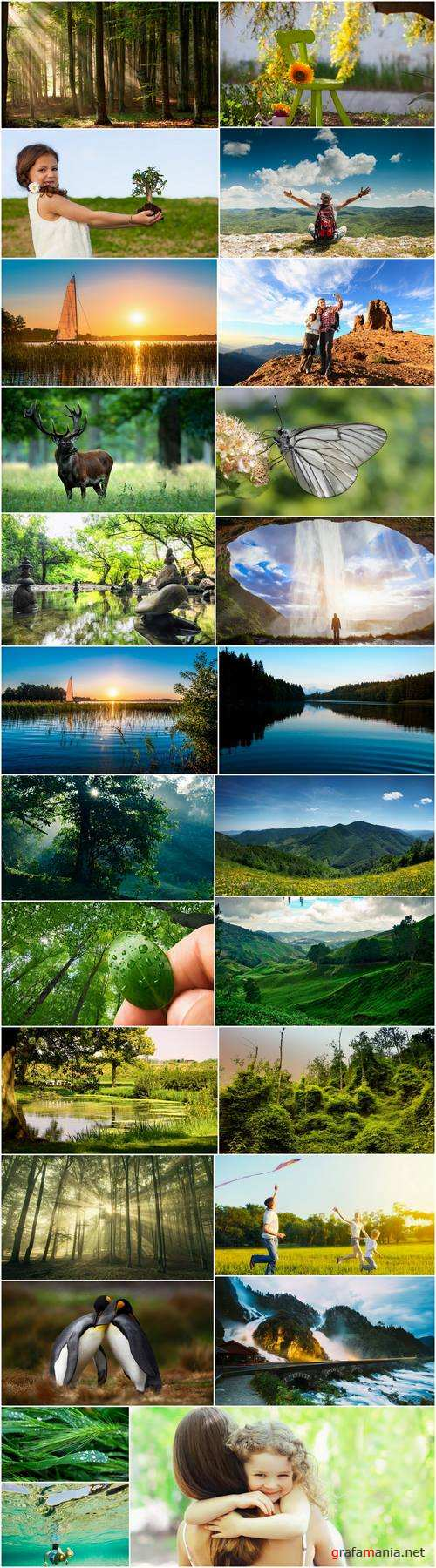 Nature landscape lake river animal 25 HQ Jpeg