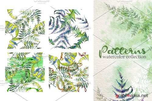 Fern Watercolor png - 3932364