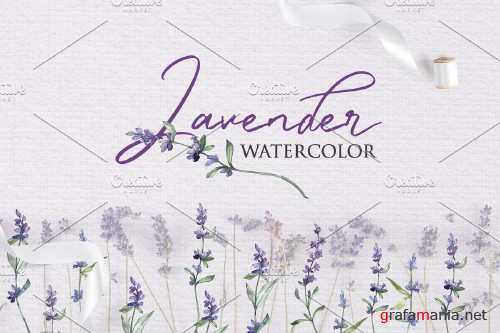 Watercolor Lavender PNG collection - 3934243