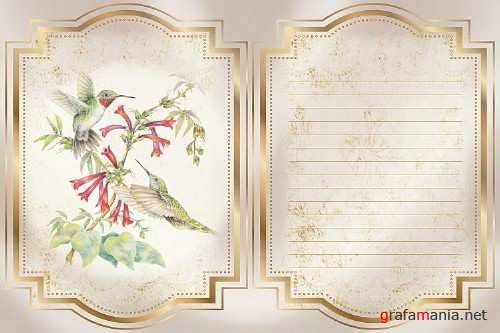 Hummingbird Journaling Kit Backgrounds Commercial Use - 292013