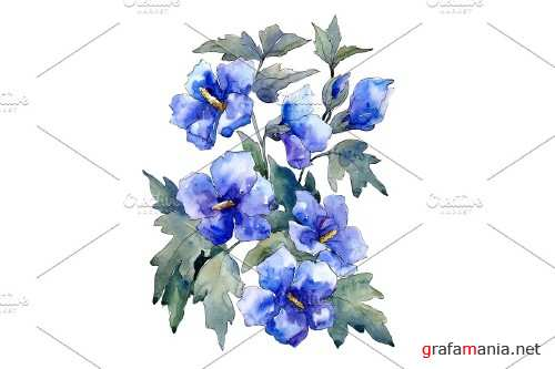 Bouquet of flowers blue Nona - 4028235