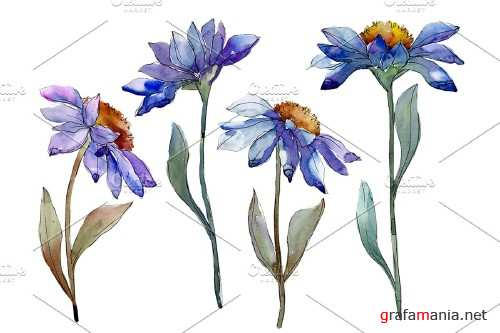 Bouquet blue of asters and daisies - 4030058