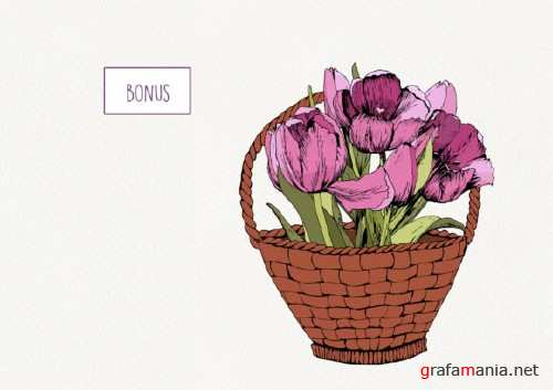 Pink Tulips. Spring Mood
