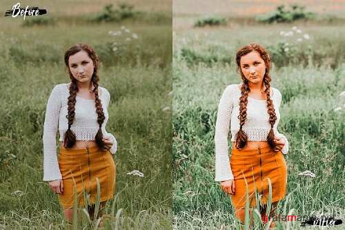 5 Summer Noon Desktop Lightroom Presets and ACR preset - 315828
