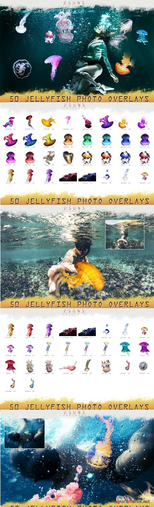 50 jellyfish overlays Clipart, PNG, transparent - 317804