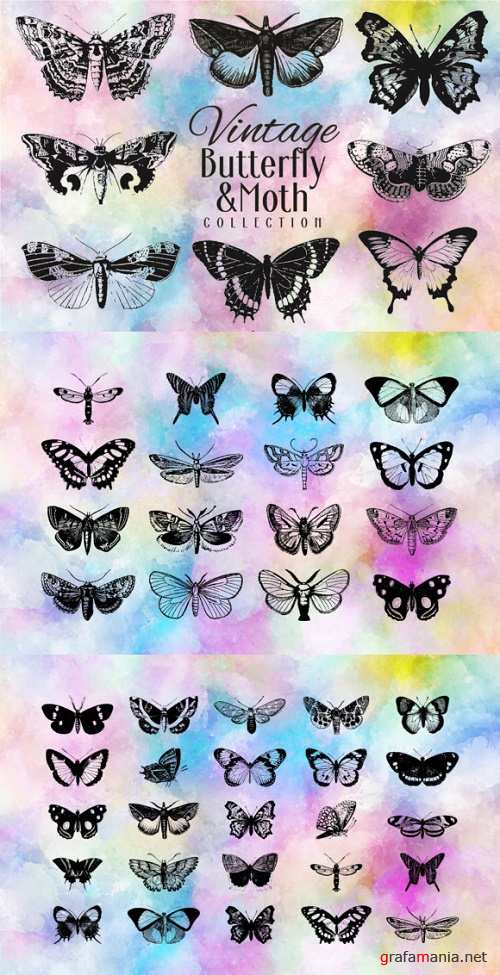 Vintage Butterfly Collection