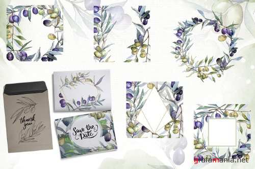 Olive branches collection - 4096867