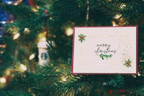 Christmas Watercolor cards collection 03 - 351299