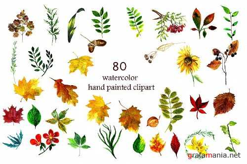 Watercolor collection Autumn Harvest - 350866 - 1766498