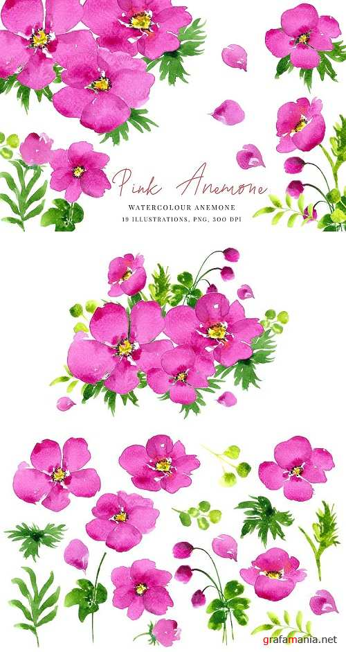 Watercolour Pink Anemone, Anemones, Wedding clipart, PNG - 356185