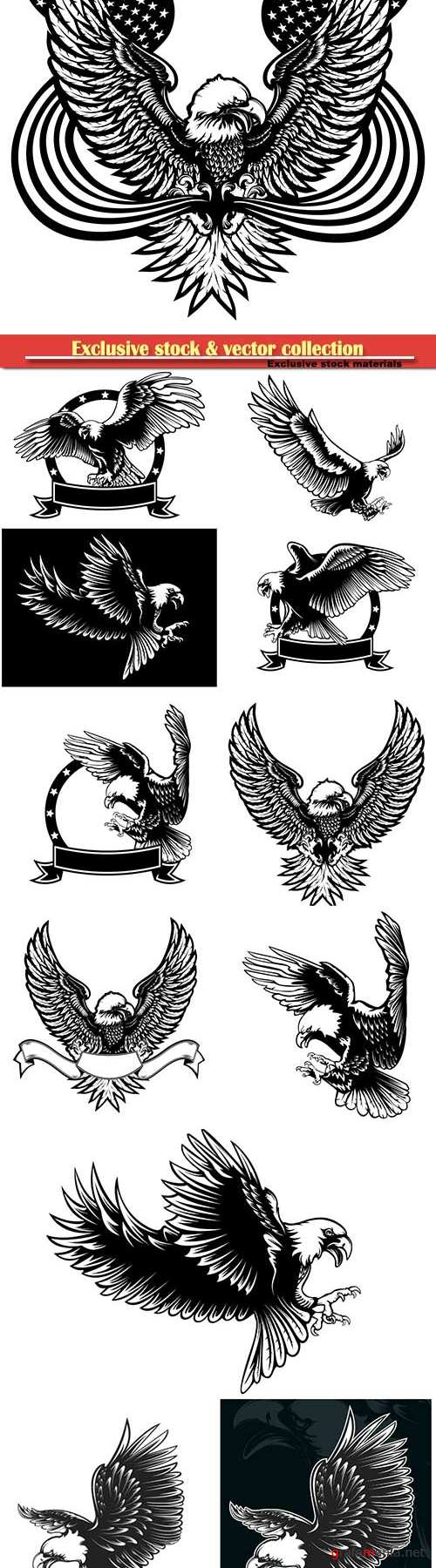 Eagle emblem vector illustration, world symbol of freedom and independence