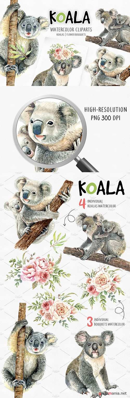 Koala. Animals watercolor clipart - 4046619