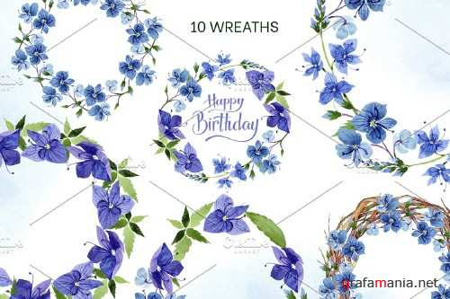 Veronica flower blue watercolor png - 4160562