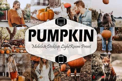 Pumpkin Mobile & Desktop Lightroom Presets - 356852