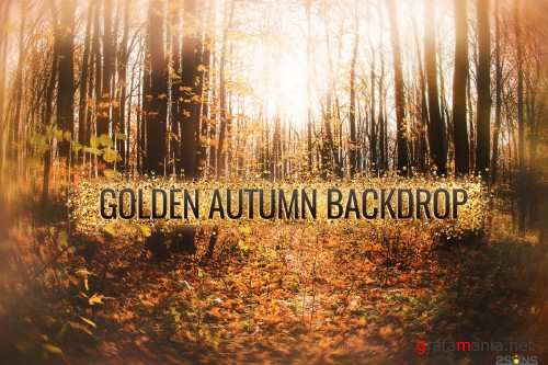 Autumn backdrop Photography Background fall outdoor editing - 374436
