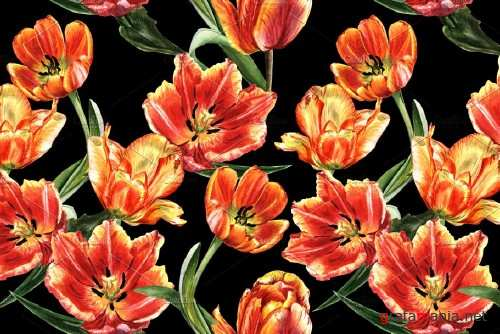 Tulip red PNG watercolor flower set - 4230147