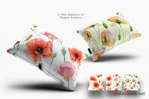 Watercolor Red Poppy Flowers - 4172505