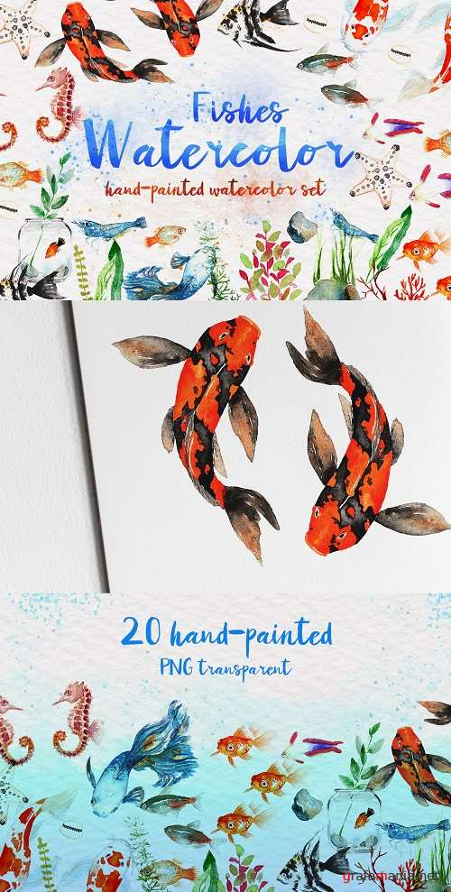 Beautiful Fishes Watercolor Set