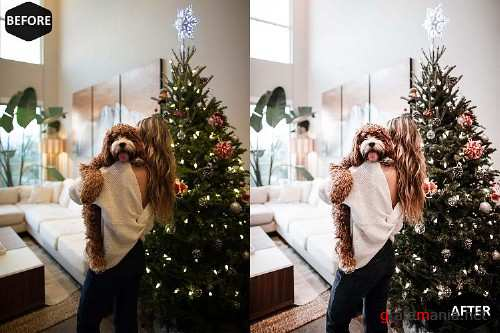 Icy Xmas Mobile & Desktop Lightroom Presets - 384160