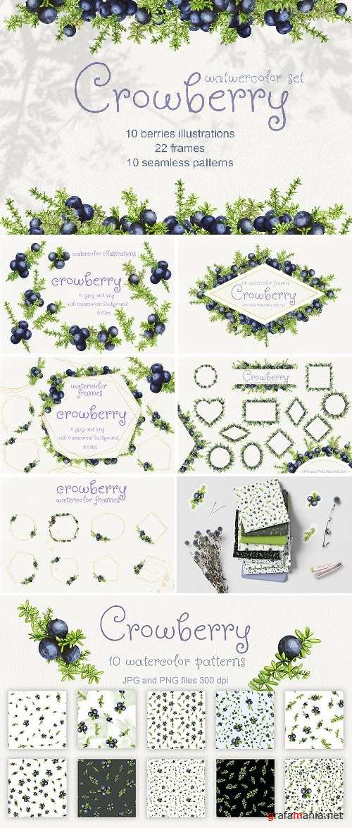 Crowberry. Watercolor set illustrations - 389734