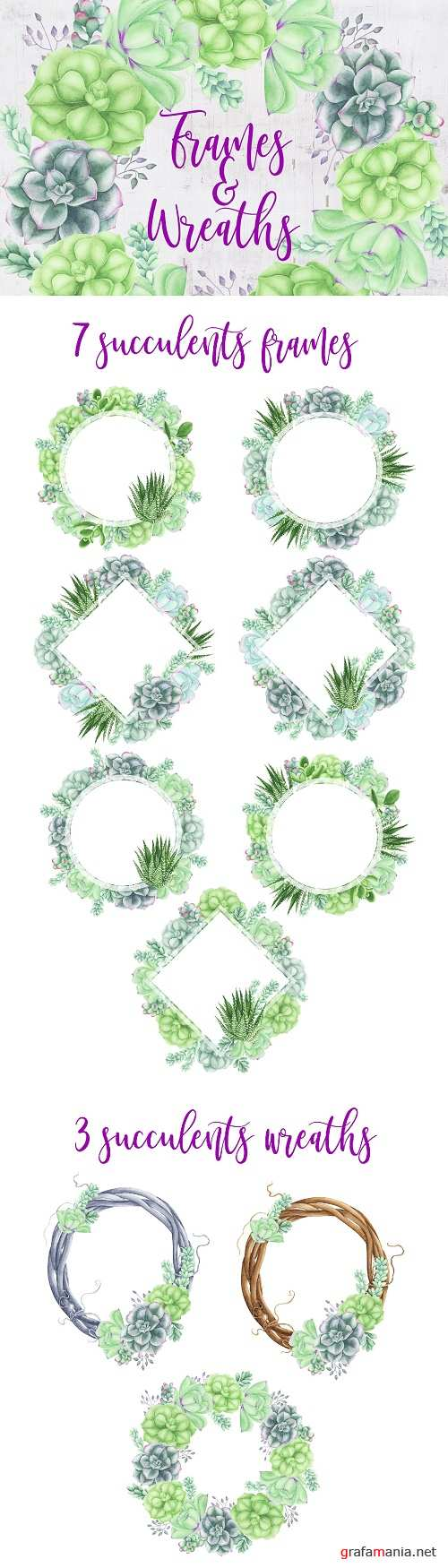 Succulents Frames and Wreath - 3717889