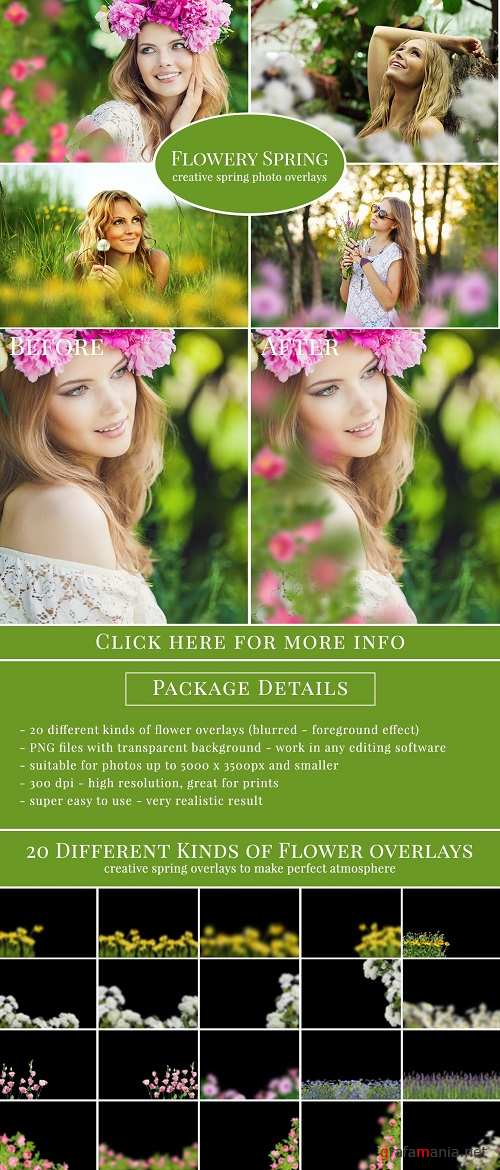 """Flowery Spring"" photo overlays set - 625848"