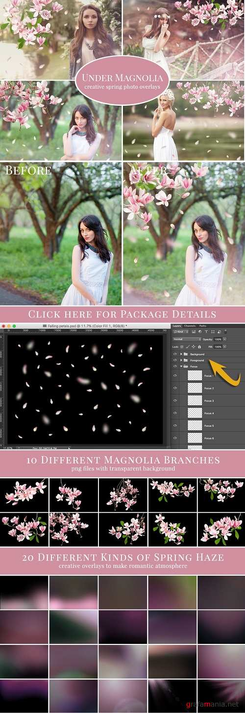 """Under Magnolia"" photo overlays set - 554089"