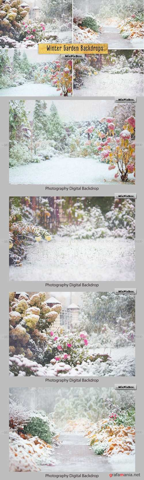 Winter Garden Backdrops - 4230186