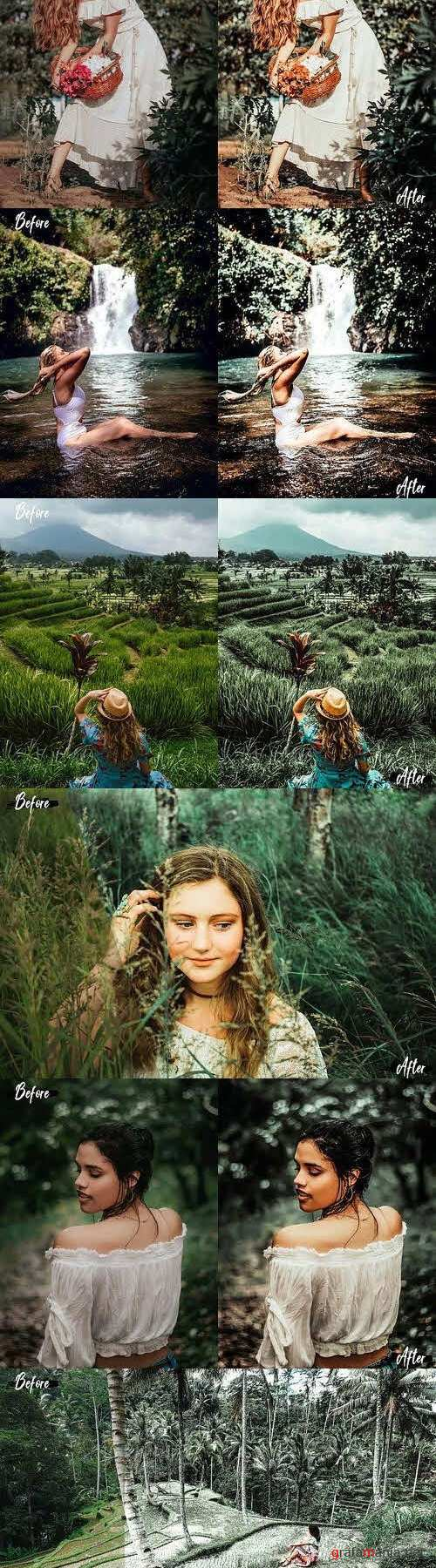 05 Woodland Lightroom Presets and ACR preset, forest moody - 423652 - 2542463